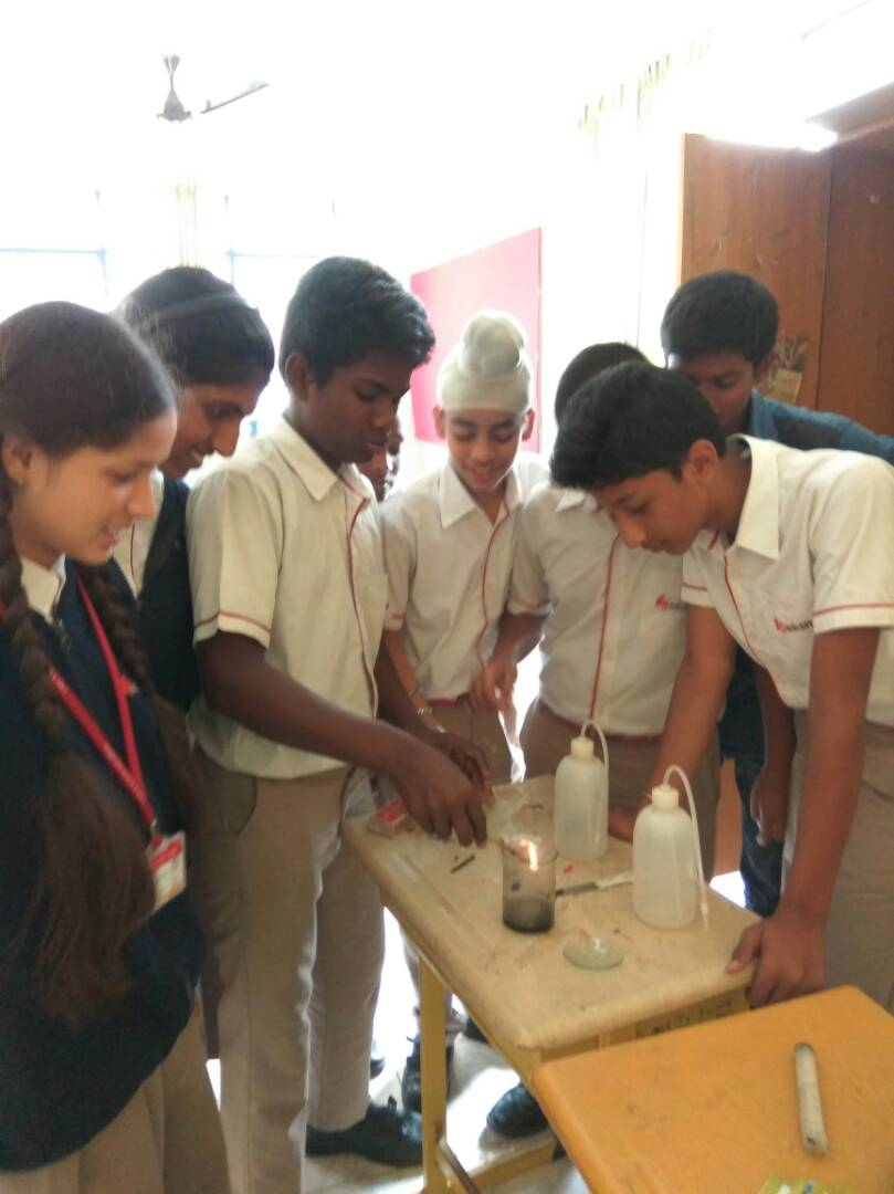 Science Lab activities from class