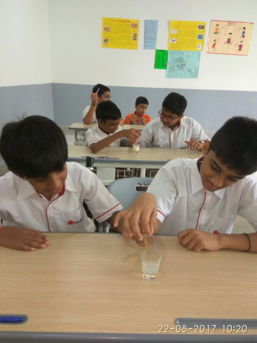 Science Activity Gr VII